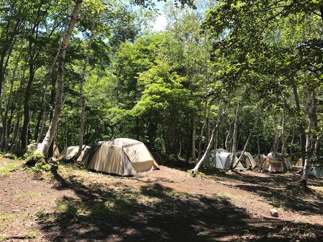 【憩いの森キャンプ場】大自然でキャンププラン!